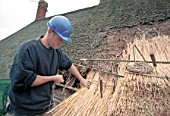 Thatching in progress. Tightening bundles with a string.
