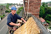Thatching at apex of roof of Somerset cottage. United Kingdom.