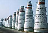 Mass highrise lofts for pigeons, Nile Delta region, Egypt