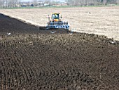 Plowing a field in the Cambridgeshire fens