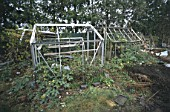 Derelict greenhouses and rubbish in overgrown and abandoned garden. Cheltenham, United Kingdom.