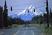 Road junction in wilderness - state of Alaska - USA