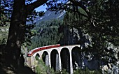Local train of Rhaetian railway crossing landwasser viaduct - Swiss Alps - canton of Grisons - Switzerland