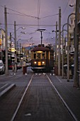 Tram at evening - city of Adelaide - state of south Australia - Australia