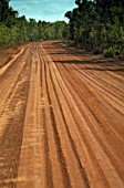 Outback road (near the town of Darwin) - state of northern territory - Australia