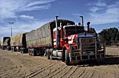 Road train (near the town of Alice Springs) - state of Northern Territory - Australia
