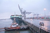 Germany, Hamburg. Tug boat and containership at Burchardkai in the harbour of Hamburg
