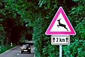 Road sign in Germany warning wild animals could cross the road.