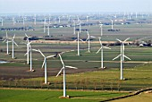 Wind farm, Schleswig-Holstein, Germany