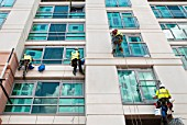 Abseiling window cleaning team