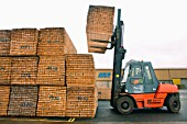 Forklift truck lifting timber on the dockside at a port in Newport, South Wales, UK