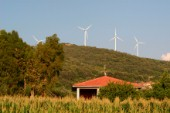 There are a fairly large number of wind turbines in the agricultural areas of South Italy as part of developing alternative energy resources.