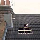 Loft conversion. Cutting a hole in the roof for a new window