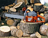 Logs and chainsaw.