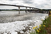 Orwell Bridge, Ipswich, Suffolk, UK