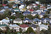 Suburban neighbourhood in Auckland, New Zealand.