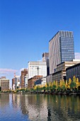 Marunouchi and Otemachi Business Area Skyline with Autumn Leaves, Tokyo, Japan