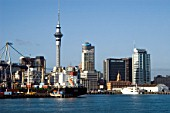 Skytower and Docks in Auckland, New Zealand