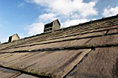 Slate roof and cuppola, Linenhall Stables, Chester, UK