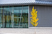 Exterior view of  performing arts building at Utah State University in Logan Utah. this is an impressive structure which features metal cladding, glass and poured concrete on the exterior. Fall collors can be seen in the foliage.