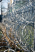 Barbed wire security fence