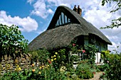 Thatched Cottage with pretty garden, Didcot, Oxfordshire, UK