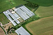 Aerial view north east of green house, poly tunnel, fields, farm buildings north east of Tonbridge in Kent, UK