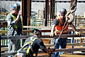 Workers prepare to hoist a piece of steel at Tower One site, Lower Manhattan, New York City, USA