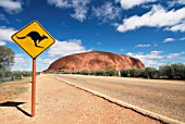 Kangaroo warning sign on road near Uluru, Northern Territory, Australia