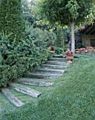 A set of steps are seen beside a lawn