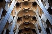Inside the Sagrada Familia Cathedral, Barcelona, Spain, Antonio Gaudi