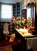 View of beautiful flowers in a bathroom