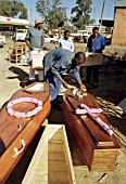 The funeral industry booms in Zimbabwe with the onslaught of aids  Zimbabwe, Harare,1999.