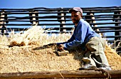Man working on thatching, Lucia Wetland Park, Africa