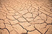 Dry Cracked Earth In Alicahue, Chile