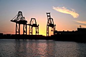 Industrial Harbor Cranes Silhoueted by The sunset