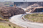 E.ONs biofuel power station in Lockerbie Scotland with timber supplies.The power station is fuelled 100% by wood sourced from local woodlands and generates enough electricity to supply 70 000 houses. The plant is carbon neutral