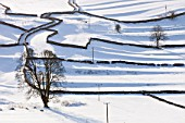 The Yorkshire Dales near Settle, covered in snow, UK.