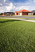 Victoria and New South Wales have been gripped by a desperate drought for the last 15 years, leading to water shortages. These new houses in Echuca have been designed with plastic grass lawns as it is simply too expensive to water the lawns, or water restrictions dont allow lawn watering to help conserve water