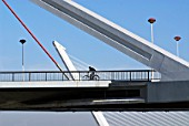 Spain, cyclist crossing the Guadalquivir River in Seville linked by bridges designed by architect Santiago Calatrava