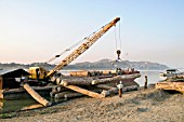 Unloading teak and other hardwoods at Mandalay Harbour on the Irrawady River near Sagaing, Myanmar