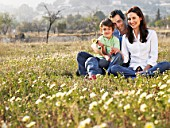 Parents and son (6-8) sitting in field, smiling, portrait