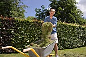 Man putting cut grass in wheelbarrow