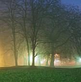 Park at night through haze