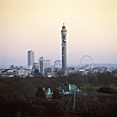 London skyline with tower and London Eye