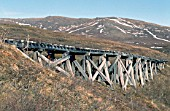 A typical American style wooden trestle viaduct on the abandoned Wild Goose Railway in the Arctic Circle of Alaska shown in June 2000.