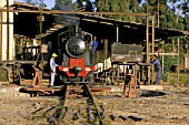The rebuilding of Eritreas railway between Masawa on the Red Sea Coast and Asmara the capital, following 30 years of abandonment and Civil war, was little short of miracle. This scene of the steam depot in Asmara in 1998 shows 0-4-0 Well Tank built by Breda built 202 004 of 1929 freshly overhauled. Many artisans long since retired were recalled to spearhead the renaissance of this former Italian colonial railway albeit that many were in their 70s and 80s.