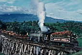 Insular Lumber Companys Baldwin Built 4 Cylinder Compound 0-6-6-0 Mallet No.7 draws logs bound for the coastal sawmill over the wooden trestle viaduct on the Philippine Island of Negros. The viaduct built in the best of Wide west traditions under American Colonial rule and complete with active volcano in background. 08:00 on Sunday 27th October 1974.