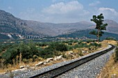 Metre gauge system of Greek Peloponnese, The approach to acladokampos from the north in August 1982.