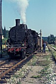 A former Golsdorf designed Austrian 270 Class 2-8-0 classified 25 by Yugoslav State Railways at work on the freight only Ljubljana Kocevje line on Tuesday 8th August 1983.